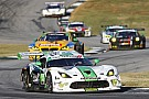 IMSA Viper Exchange ends Dodge Viper IMSA racing career with a victory from the pole at Petit Le Mans