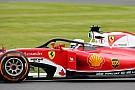 Formula 1 Rosberg says Halo postponement