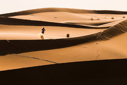 Action in the dunes of Morocco