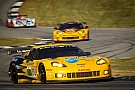 Corvette Racing sets 2012 driver lineup