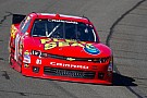 Landon Cassill looking for a little more