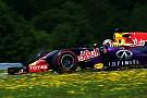 Surpreso, Ricciardo fala sobre rumores de ida para a Ferrari