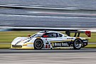 IMSA Albuquerque joins Action Express Racing for enduros