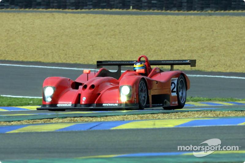 David Brabham in the Panoz