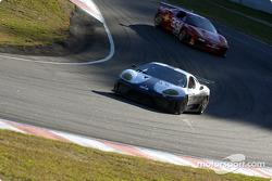 A pair of Ferrari 360GT