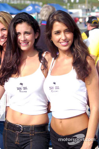 The lovely Dark Dog Racing girls