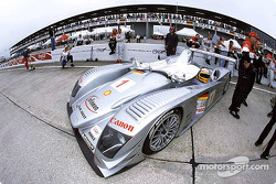 Infineon Team Joest Audi R8 on the starting grid