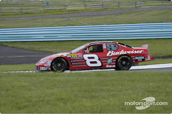 #8 Dale Earnhardt Jr