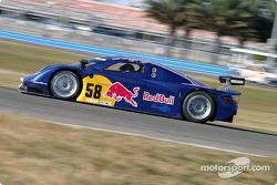 #58 Brumos Racing Porsche Fabcar: David Donohue, Darren Law, Sascha Maassen, Lucas Luhr