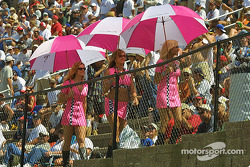 The Umbrella girls in the crowd