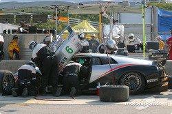 Pitstop for #6 Krohn-Barbour Racing Lamborghini Murcielago R-GT: Tracy Krohn, Scott Maxwell, Joe Fox