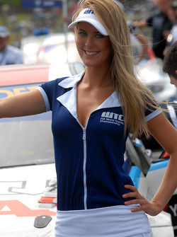 Stephano D'Aste's grid girl