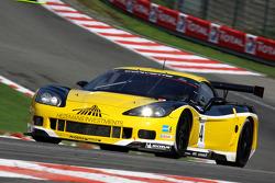 #14 Phoenix Racing / Carsport Corvette Z06: Andrea Piccini, Anthony Kumpen
