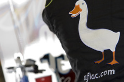 Carl Edwards' Aflac duck
