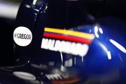 Williams FW33 detail