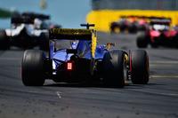 Formule 1 Photos - Felipe Nasr, Sauber C35