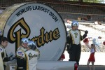 The Purdue Band and