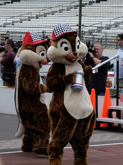 Chip and Dale are part of the crew