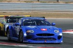 #80 Emil Frey Racing Jaguar XK: Lorenz Frey, Gabriele Gardel, Fredy Barth