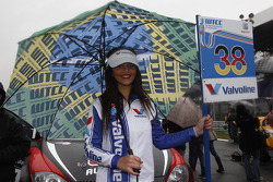 Grid girl of Marc Basseng, ALL-INKL.COM SEAT Leon WTCC