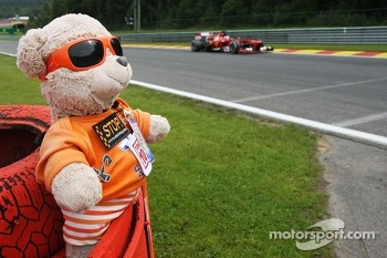 Fernando Alonso, Ferrari F138 passes a teddy bear marshal