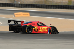 #43 Team Sahlen BMW / Riley: Joe Nonnamaker, Will Nonnamaker