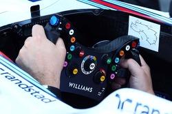 Williams FW36 steering wheel