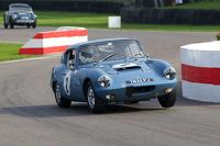 Martin Greaves - 1963 - Elva Courier Mk3 GT