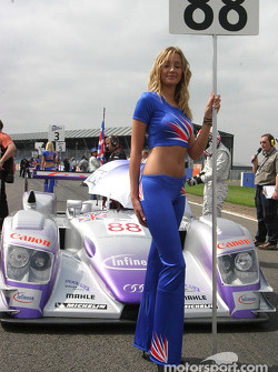 Audi Sport UK Team Veloqx grid girl