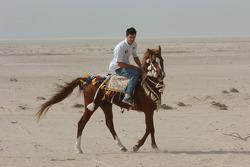 Mark Webber on an Arab horse