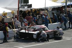 Pitstop for #6 Graydon Elliott Fusion Racing with MSR Lexus Riley: Paul Tracy, Paul Mears Jr., Mike Borkowski, Ken Wilden