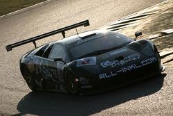 All-Inkl.com Reiter Lamborghini Murcie_lago: Kox, Menten