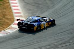 #19 PSI Experience Corvette C6R: Luke Hines, Philipp Peter