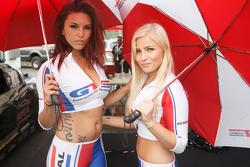 Lovely paddock girls