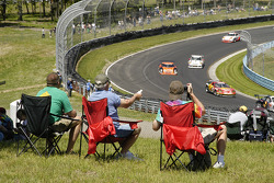 Fans at turn 6