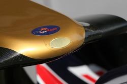 Toro Rosso, nose cone
