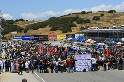 Fans on the ALMS grid