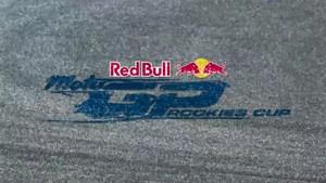 Red Bull MotoGP Rookies Cup 2011 - Assen - Summary