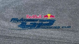 Red Bull MotoGP Rookies Cup 2011 - Misano - Summary