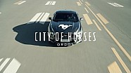 City of Horses | Ford Mustang, in Ordos, Inner Mongolia