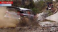 Rally Mexico Shakedown - Hyundai Motorsport 2016