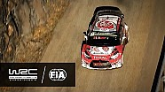 WRC - Especial 2016: MIEDO