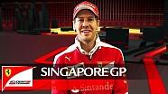 Singapore Grand Prix - The heat of the night