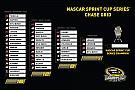 2016 NASCAR Sprint Cup Championship 4 grid