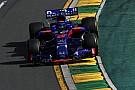 Верня насмішило запрошення Хартлі в Toro Rosso