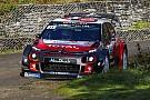 WRC Льоб розчарований через аварію на Корсиці