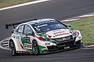 WTCC Argentina WTCC: Michelisz wins after Catsburg's repeat puncture