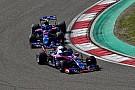 """Toro Rosso celebra: """"Melhor situação em que já estivemos"""""""