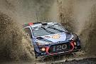 WRC Rivalität Neuville und Mikkelsen: