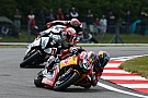 World Superbike Camier: Honda